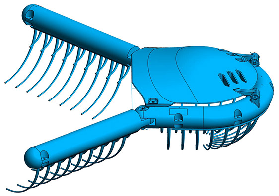 Modeling of the River Whale